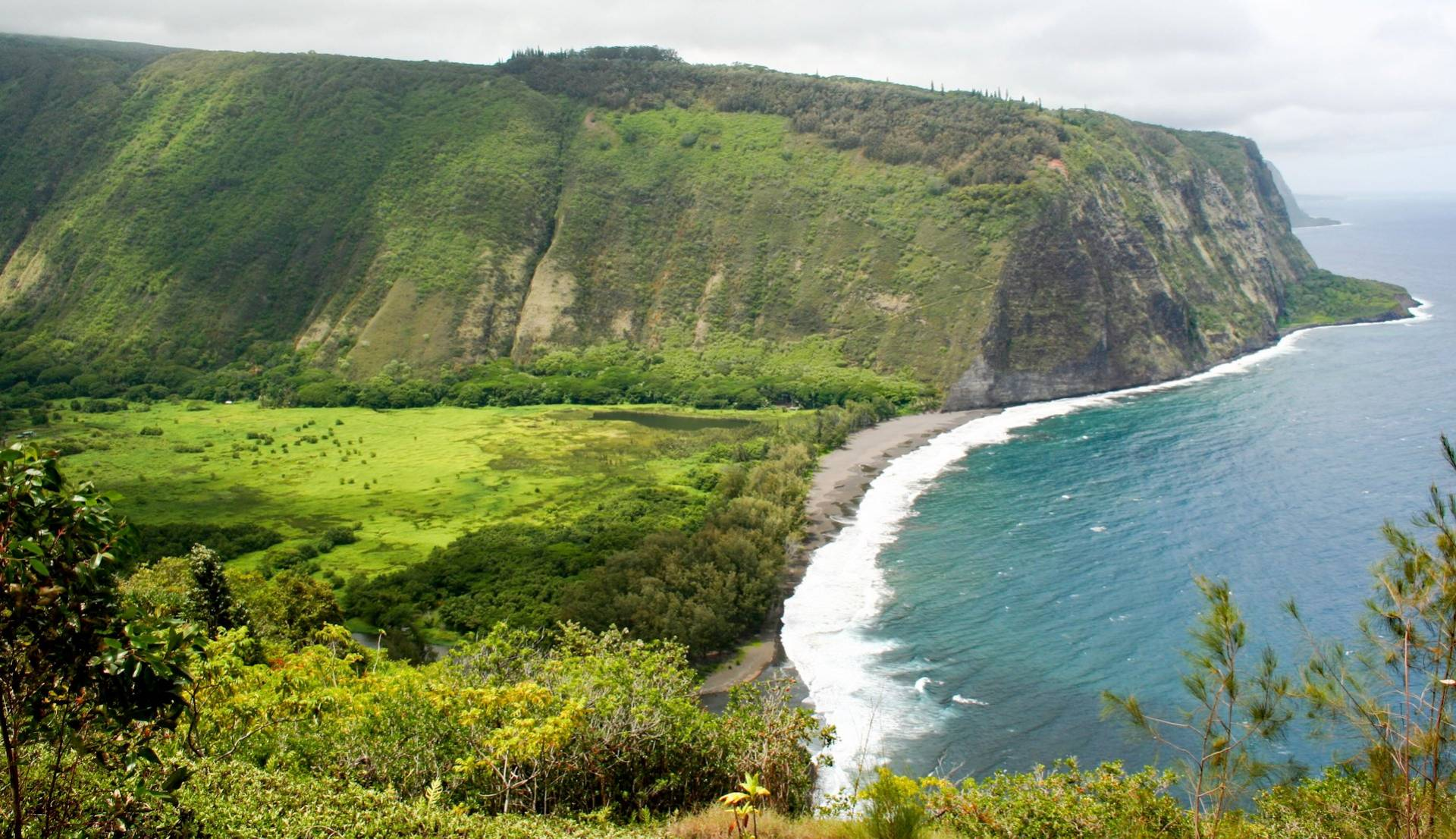 T-Waipio valley syl